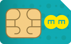 ee-data-only-payg