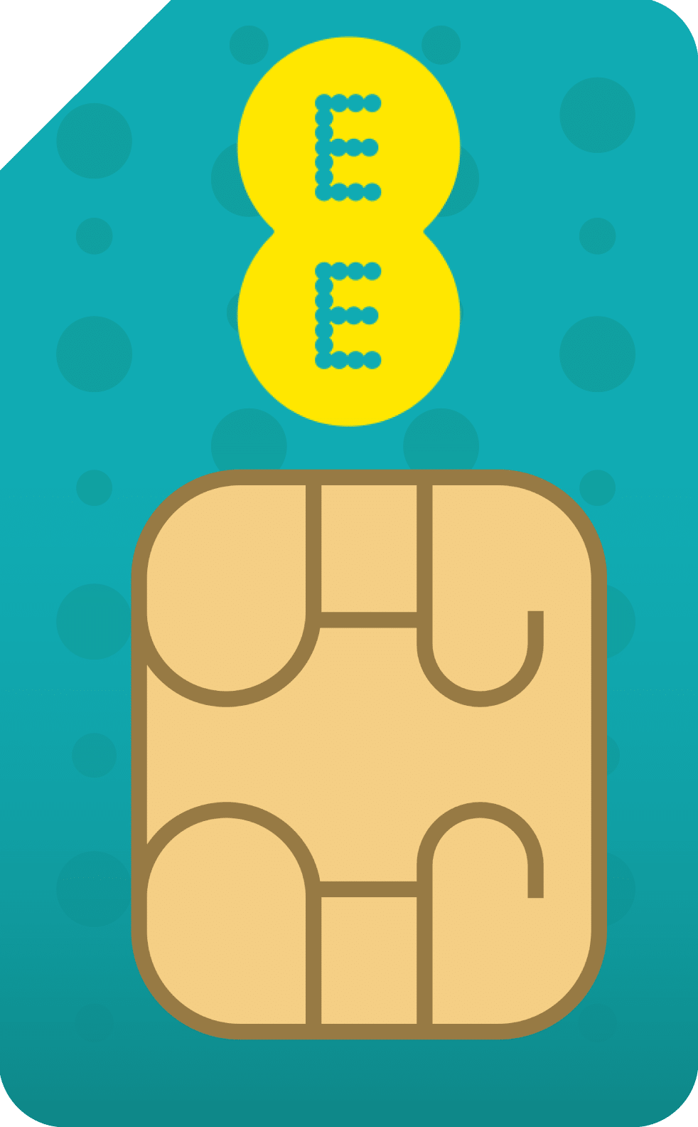 EE 60 GB SIM Only